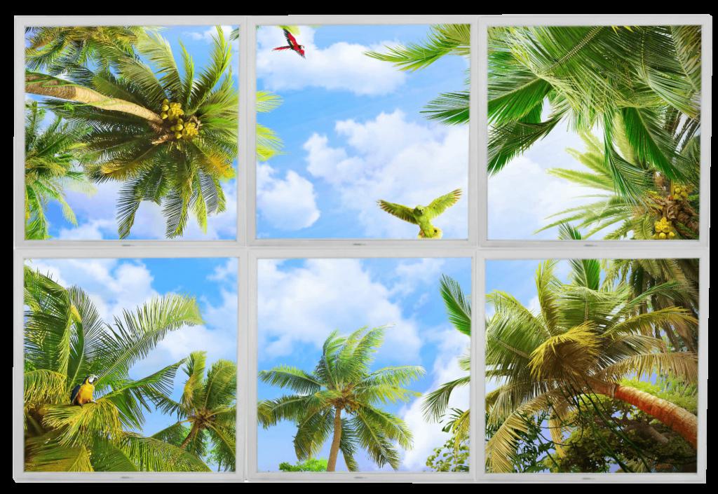 Lumigo Flying Parrots PNG